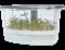 Микроферма Dream Sprouter - проращиватель с подсветкой и таймером - фото 7658